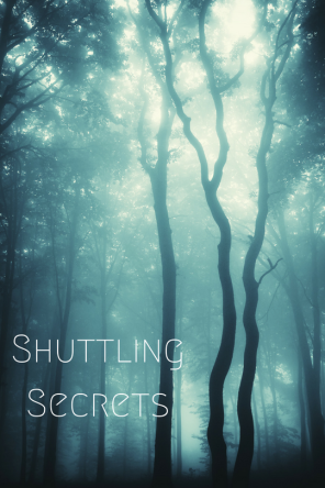 Shuttling Secrets